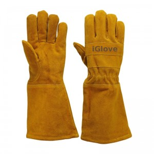 iGlove3